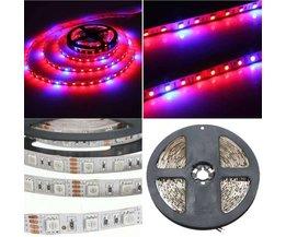 LED Grow Light Strip 12V