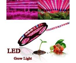 Grow Lamp LED Strip