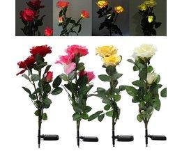 LED blommor