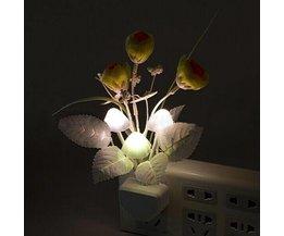 Lampa med svampar Blommor och löv