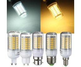 LED-montering av flera arter