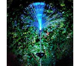 LED Trim Garden