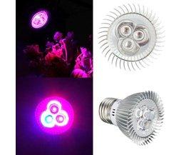Blommande LED-lampa 6W med E27 Montering