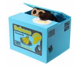 Creative Money Box