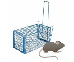Vänliga Mousetrap 2 storlekar