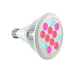 ARILUX E27 glödlampa för växter 12W / 24W