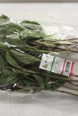 Horapa Leaf (100gr.)