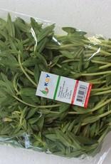 Kayang Leaf (100gr.)
