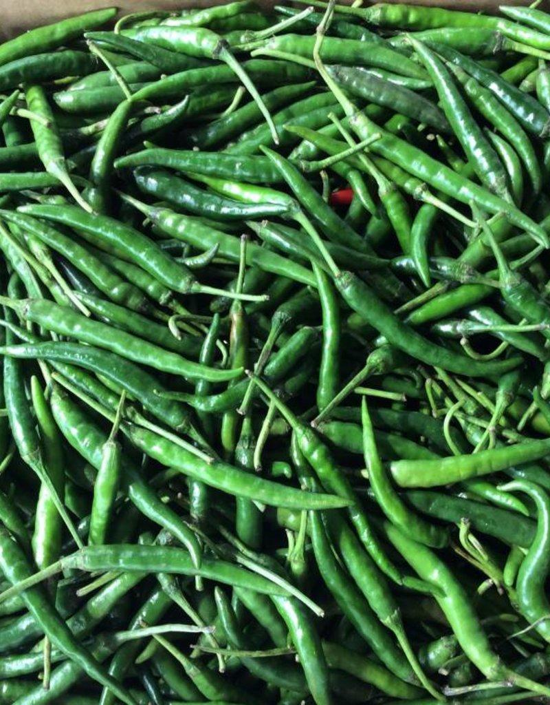 Rawit Pepper Groen Small _ 1 kg