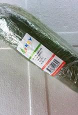 Green Papaya_Thai_(100gr.)