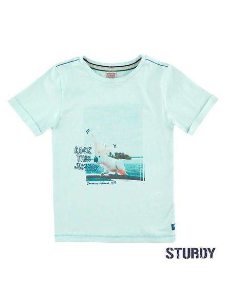 Sturdy 71700201