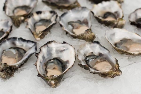 oesters bij champagne