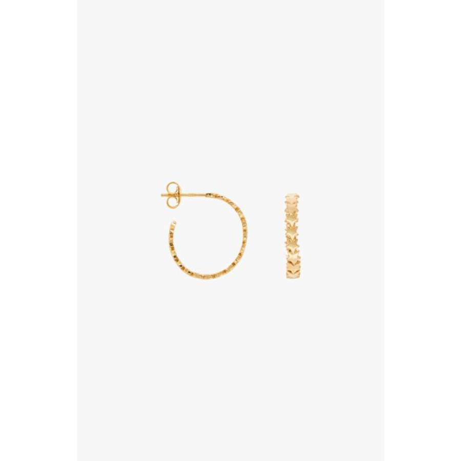 Star Hoops - Large - Gold Plated