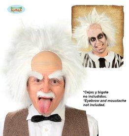 FIESTAS GUIRCA pruik Einstein