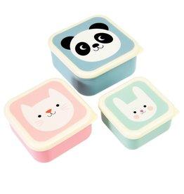 Koekendoosjes panda, kat & konijn