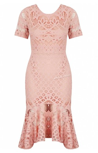 Lucy Wang PINK - 'MELODY' SHORT SLEEVE LACE MERMAID DRESS