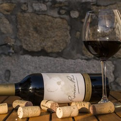Unieke wijnbeleving