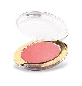 Golden Rose TERRACOTTA BLUSH-ON 9