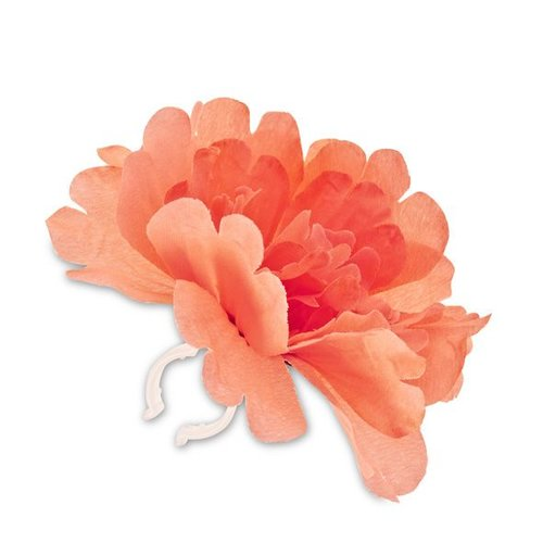 Basil Basil losse bloem Peony oranje