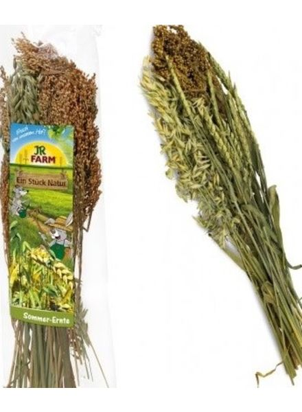 JR-Farm Zomer oogst