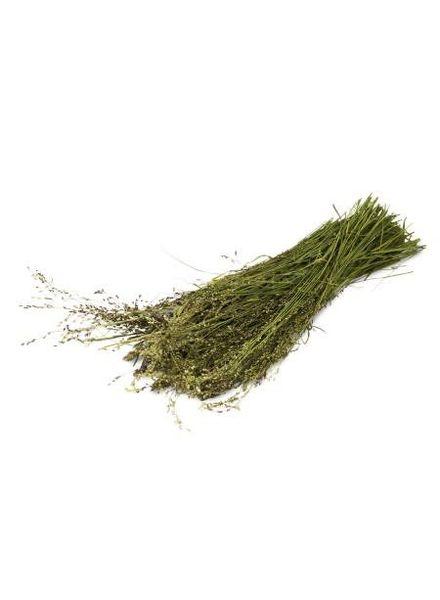 JR-Farm Wilde grassen oogst