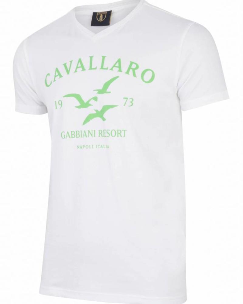 CAVALLARO Gabbiani Tee - Light Green - 51000