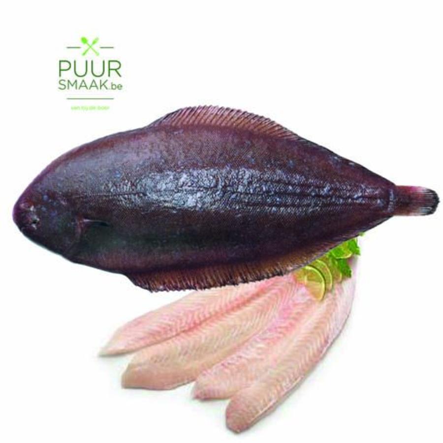 Tong 4 per kg (bruto)-1