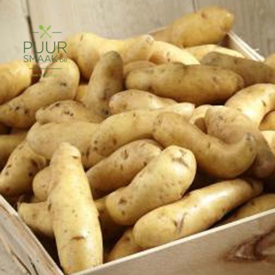 Aardappel Ratte du Toucquet (klein)-1