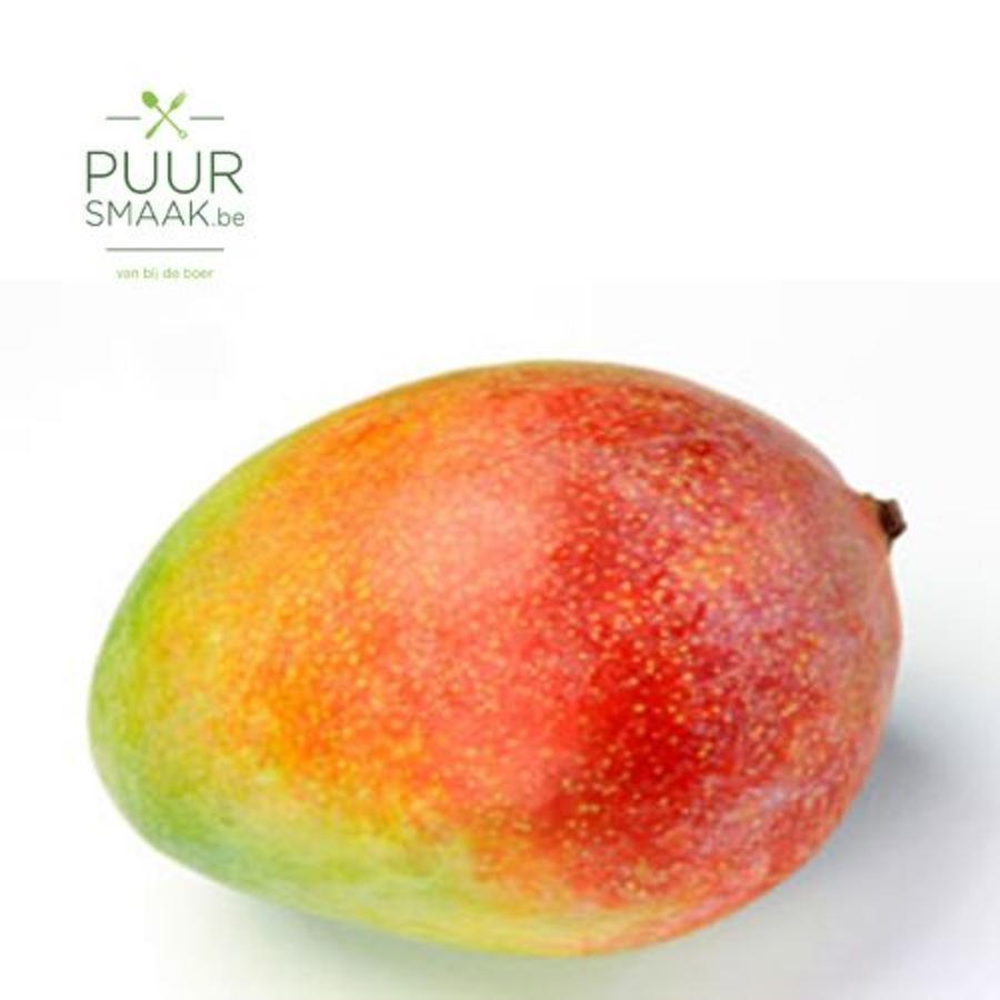 Mango  Bio-1