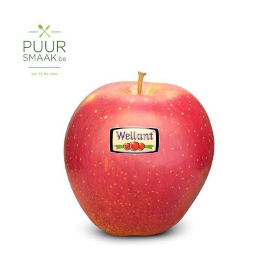 Appel Wellant-1