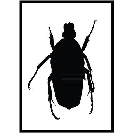 Poster black beetle