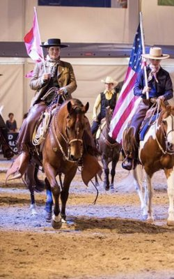 12.-14.03.2019 Individuelle Traingingtage bei Swiss Paint Horse Assiociation - Western meets Classic in Attinghausen