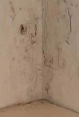 Stucwerk en Sierpleisterreiniger (750 ML)