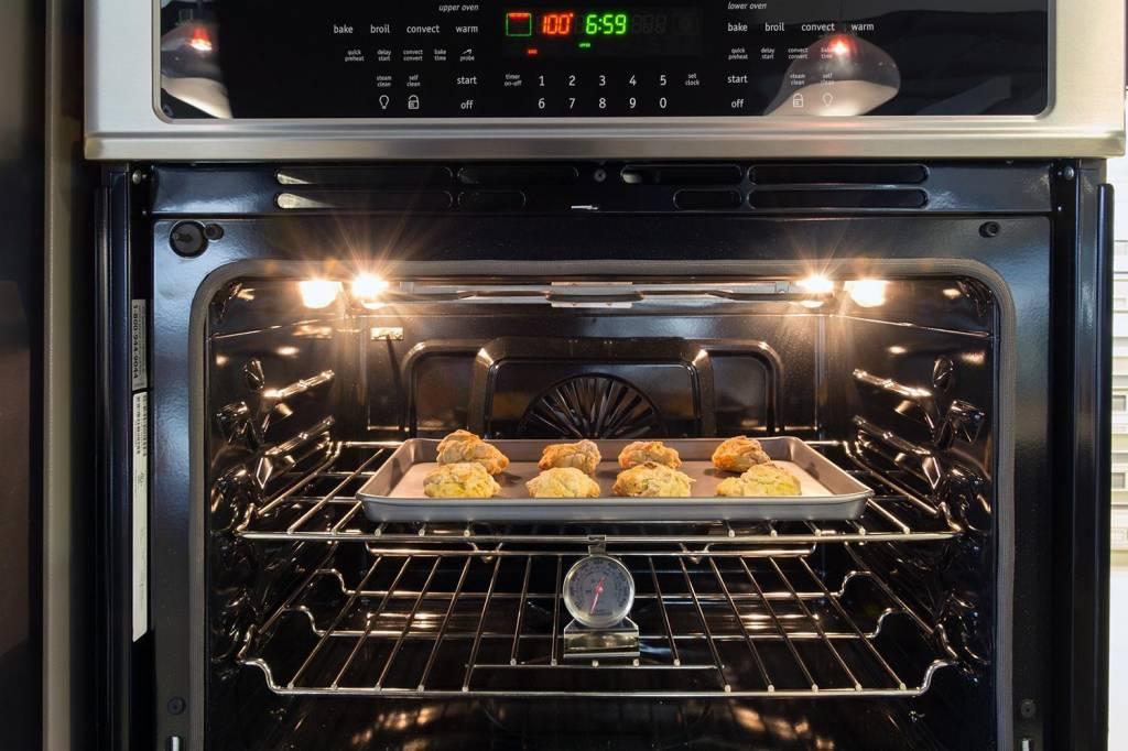 BBQ, Oven en Magnetronreiniger (500 ML)