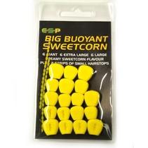 Big Buoyant Sweetcorn