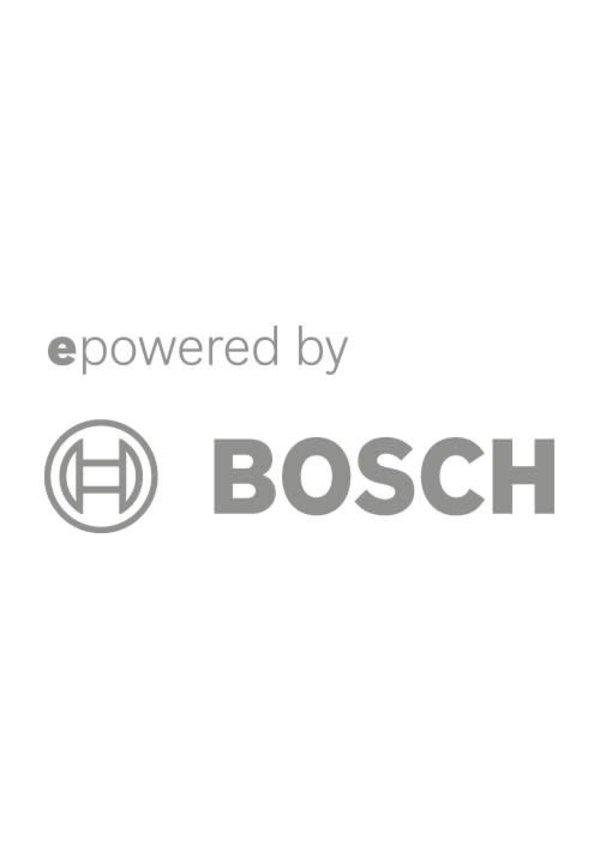 BOSCH POWERTUBE STANDARD LOCK