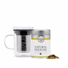 Teatox Natural Defense Bio Green Tea Ginger 70g