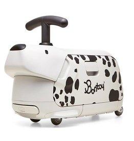 Bontoy Traveller Dalmatian