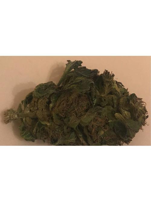 FUTURA 75 , 0.09% THC