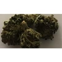 SOUR WIDOW S, 0.29% THC