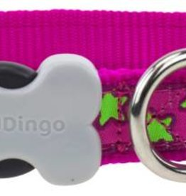 Red Dingo Lime Stars on Hot Pink Dog Collar