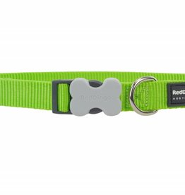 Red Dingo Classic Lime Green Dog Collar