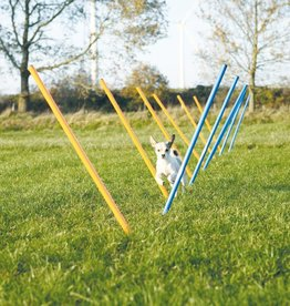 Trixie Dog Activity Agility slalom, 115 x 3 cm, 12 pieces, blue/orange