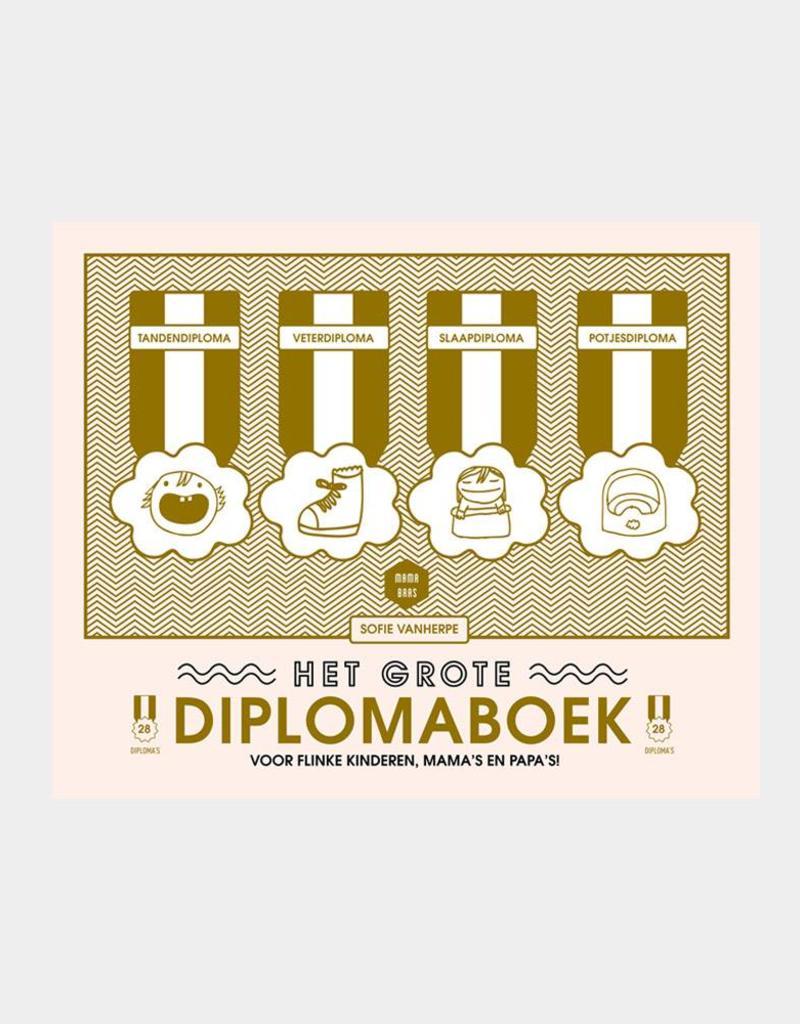 Lannoo Lannoo- Het grote diplomaboek