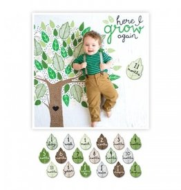 Lulujo Swaddle & cards - Here I grow again