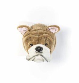 Wild&Soft Engels Bulldog Matthew