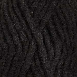 Polaris zwart (02)