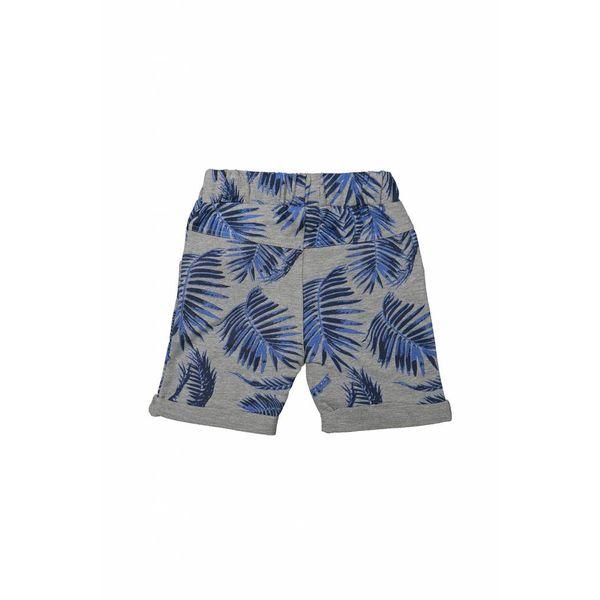 Jongens jogging short dutchjeans on aruba met palmboom print   DJ DUTCHJEANS