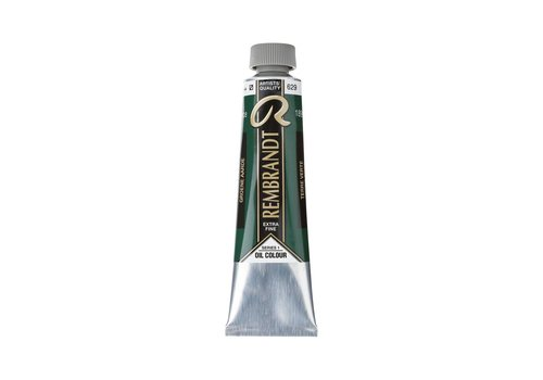 Rembrandt Rembrandt 40ml olieverf 629 Groene aarde