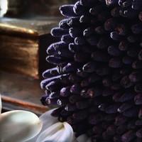 Sacred Elephant Incense Spécialiste - Blue Lotus